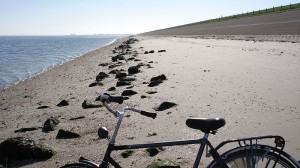 800px-Tourist_cycle_on_texel_beach