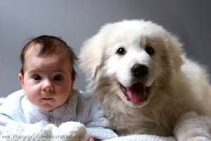 bebe-y-perro-baby-and-dog--s